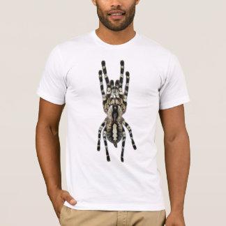 Camiseta Regalis de Poecilotheria (Ornamental indio)