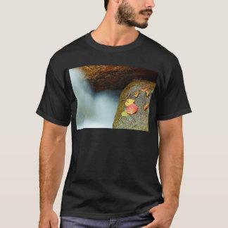 Camiseta Riachuelo acre