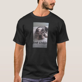 Camiseta Ropa de Boston Terrier
