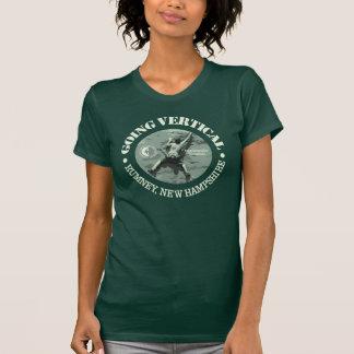 Camiseta Rumney (vertical que va)