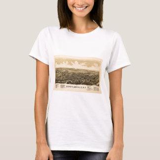 Camiseta schuylerville1889