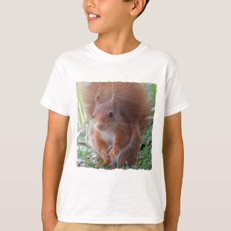 Camiseta SQUIRREL ARDILLA by Jean Louis Glineur