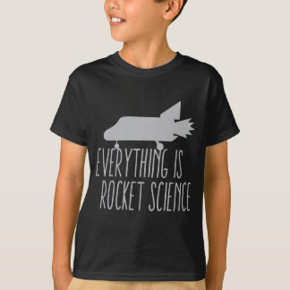 Camiseta Todo es INGENIERÍA ESPACIAL