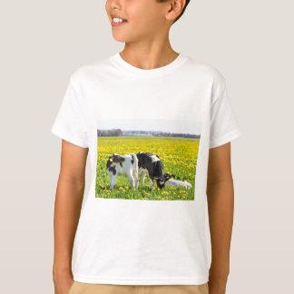 Camiseta Tres calfs recién nacidos en prado de los dientes