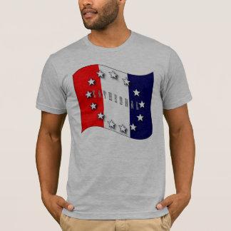 Camiseta Tributo americano V2