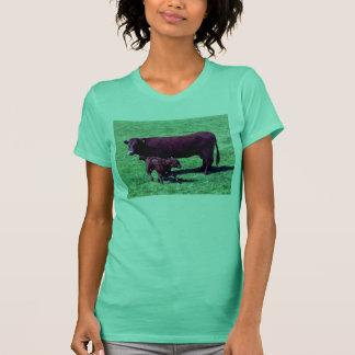Camiseta Vaca roja de rubíes del sur de Devon y becerro