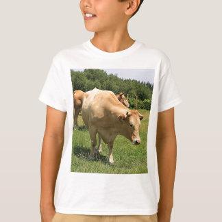 Camiseta Vacas en el campo, EL Camino, España 2