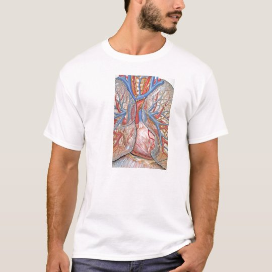 Camiseta Venas del Corazón