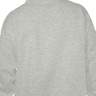 Campaña consultiva inicial sudadera pullover
