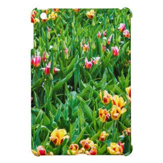 Campo con los tulipanes rosados y amarillos