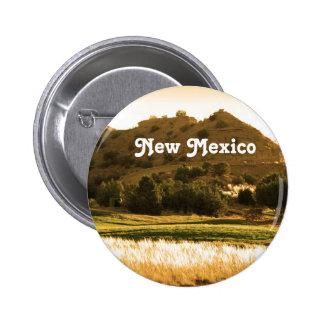 Campo de New México Pins
