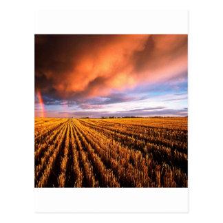 Campo de rastrojo del arco iris Saskatchewan Postal
