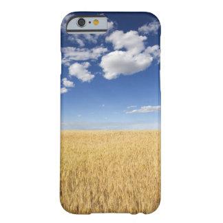 Campo del trigo funda de iPhone 6 barely there