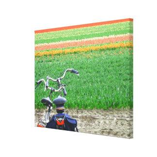 Campo del tulipán de la primavera y bicicletas par impresión en lona estirada