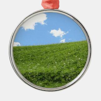 Campo herboso en la colina del balanceo contra el adorno de cerámica
