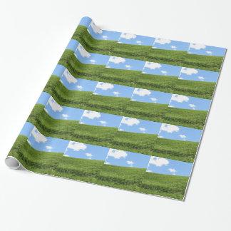 Campo herboso en la colina del balanceo contra el papel de regalo