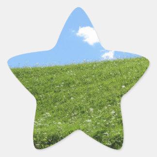 Campo herboso en la colina del balanceo contra el pegatina en forma de estrella