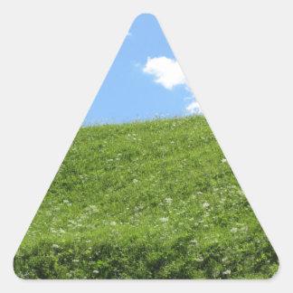 Campo herboso en la colina del balanceo contra el pegatina triangular