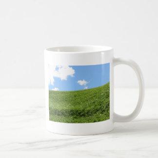 Campo herboso en la colina del balanceo contra el taza de café