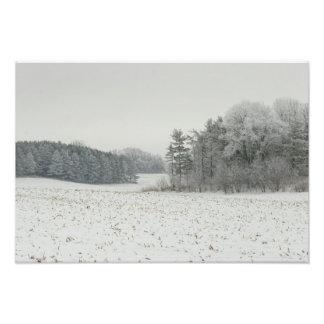 Campo Nevado e impresión de los árboles Foto