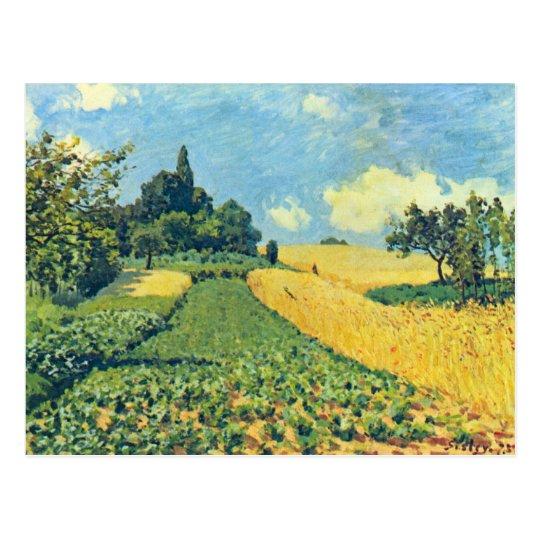 Campos de grano en las colinas de Argenteuil por Postal