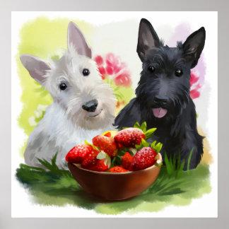 Campos de la fresa póster