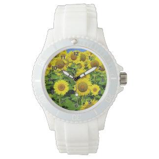Campos del girasol relojes de mano