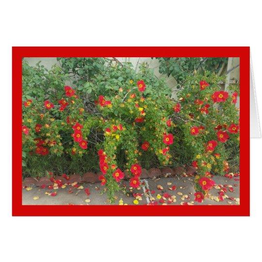 Canción de las floraciones del rojo que hace tarjeta de felicitación