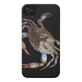 Cangrejo azul iPhone 4 protector