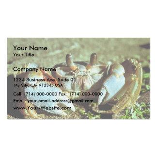 Cangrejo del fantasma tarjeta de visita