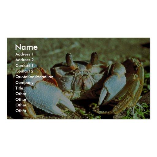 Cangrejo del fantasma plantilla de tarjeta de visita