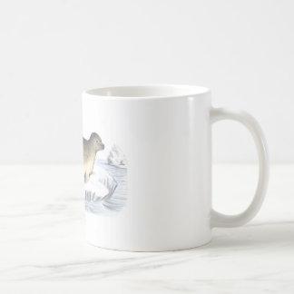 Cangrejo que come el mamífero marino ártico del se tazas