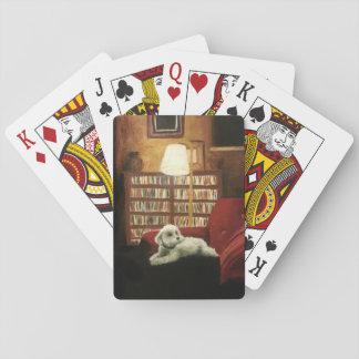 Caniche en el retrato del mascota de la silla barajas de cartas