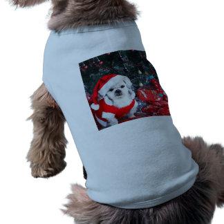 Caniche santa - perro del navidad - perro de Papá