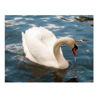 Canto del cisne postal