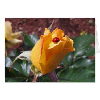 Capullo de rosa amarillo con la mariquita tarjeta de felicitación