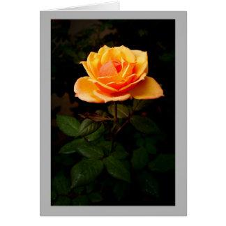 Capullo de rosa amarillo minúsculo con las hojas tarjeta de felicitación