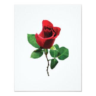 Capullo de rosa rojo precioso invitación 10,8 x 13,9 cm