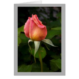 Capullo de rosa rosado 7 tarjeta de felicitación