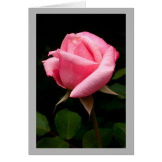 Capullo de rosa rosado de la tarjeta del día de