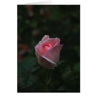 Capullo de rosa rosado tarjeta
