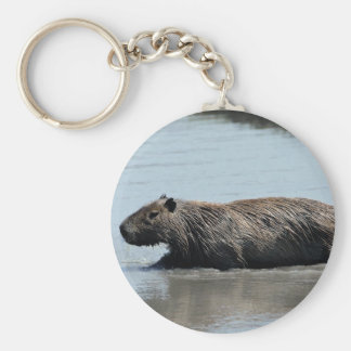 Capybara que hunde en el agua llavero redondo tipo chapa