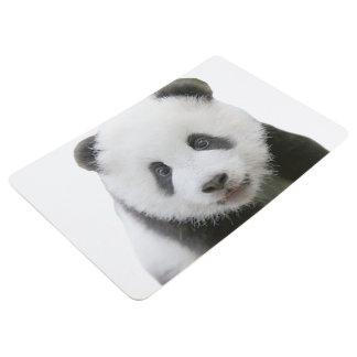 Cara de la panda alfombra