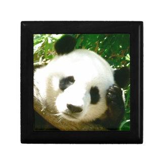 Cara de la panda caja de recuerdo