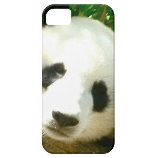 Cara de la panda iPhone 5 Case-Mate protector