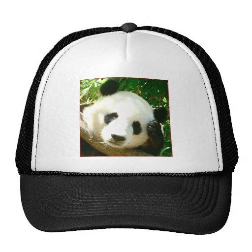 Cara de la panda gorro