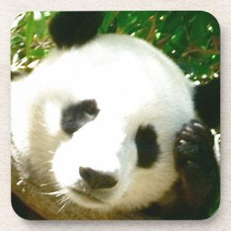 Cara de la panda posavasos de bebida