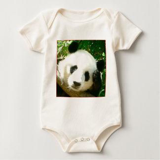 Cara de la panda ranitas