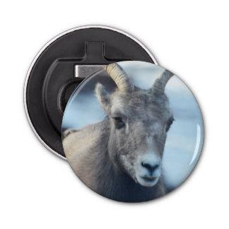 Cara de una oveja de Bighorn Abrebotellas Redondo