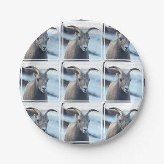 Cara de una oveja de Bighorn Plato De Papel